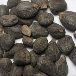 21 Palm Nuts (4&5 Eyes)