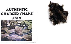 Charged Snake Skin