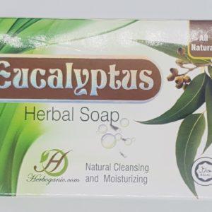 Eucalyptus Herbal Soap